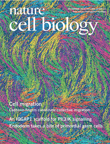 Arnold's paper made the cover of Nature Cell biology!