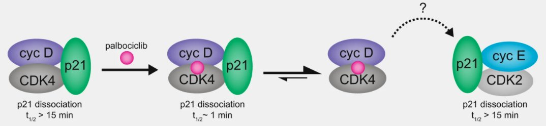 Lindsey's paper is out in Nature Communications!
